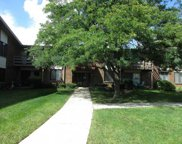 464 Raintree Drive Unit 2A, Glen Ellyn image