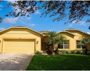 15445 Pebble Ridge Street, Winter Garden image