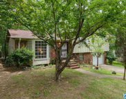 505 Conway Ln, Irondale image