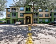 13245 Sanctuary Cove Drive Unit 304, Temple Terrace image