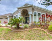 9238 Estate Cove Circle, Riverview image