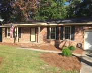 1536 Country Club Drive, Hampstead image
