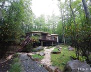 142 Rhododendron, Beech Mountain image