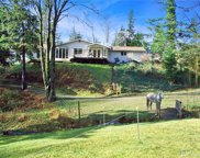 31414 358th Ave SE, Ravensdale image