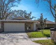 3133 Hillside Lane, Safety Harbor image