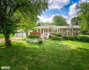 7803 ROYSTON STREET, Annandale image