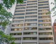 1415 North Dearborn Parkway Unit 7B, Chicago image