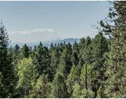29300 South Sunset Trail, Conifer image