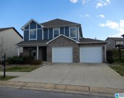 22879 Downing Park Cir, Mccalla image