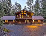 20626 Tinkham Rd, North Bend image