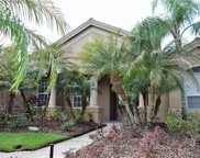 17918 Sheltered Ridge Lane, Tampa image