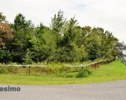 Firethorn Dr And Carlesimo Ave, Spring Hill image