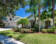 17904 Sheltered Ridge Lane, Tampa image