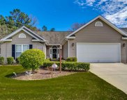 317 Milledge Dr, Conway image