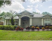 11324 Haskell Drive, Clermont image