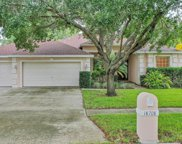 18708 Chemille Drive, Lutz image