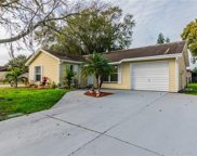 3135 Latrobe Street, New Port Richey image