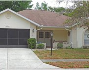 4724 Portland Manor Drive, New Port Richey image
