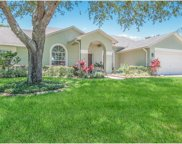 12024 Timberhill Drive, Riverview image