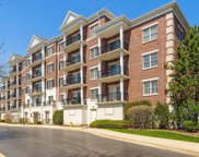 412 Mcdaniels Circle Unit 503, Clarendon Hills image
