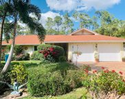 10150 Winchester Wood, Naples image