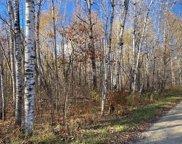 TBD Big Rice Lake Road, Remer image