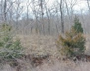 Lot 1 Tyler Branch  Road, Perryville image