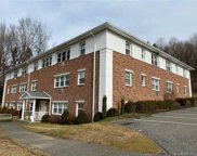 17 Fordyce  Court Unit 6, New Milford image
