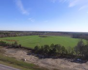 46+/- ac South Oates/ Hodgesville Rd, Dothan image