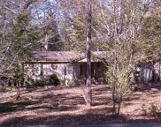 535 Crook Ln, Castalian Springs image