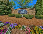 3022  Cowhorn Branch Court Unit #19, Waxhaw image