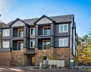 31192 Black Eagle Drive Unit 203, Evergreen image