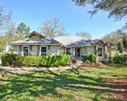 10005 Silver Bluff Drive, Leesburg image