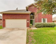 1418 Ashberry Trl, Georgetown image