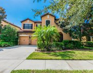20208 Heritage Point Drive, Tampa image