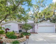 895 4th Street S, Safety Harbor image