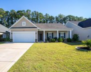 250 Palmetto Green Dr., Longs image