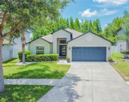 18420 Holland House Loop, Land O' Lakes image