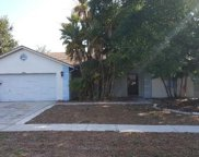 12809 Tallowood Drive, Riverview image
