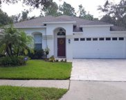 11803 Derbyshire Drive, Tampa image