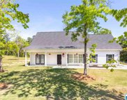 125 Turkey Trail Rd, Odenville image