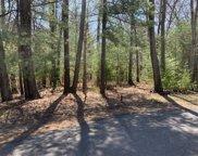 Pine Ridge Road, Lincoln image