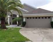 2307 Laurel Pine Lane, Orlando image