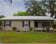 11114 Hackney Drive, Riverview image