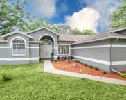14901 Sugar Cane Way, Clearwater image