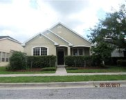 207 Manor View Lane, Deland image