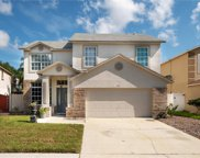 143 Knights Hollow Drive, Apopka image