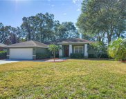 1122 Lumsden Trace Circle, Valrico image