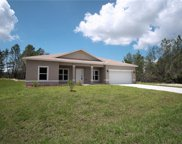 346 Hibiscus Drive, Poinciana image