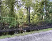 Lot 22 Cypress Knee Ct., Conway image